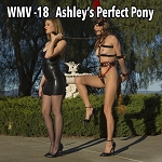 Ashley's Perfect Pony